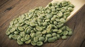 مستخلص حبة البن الأخضر لإنقاص الوزن